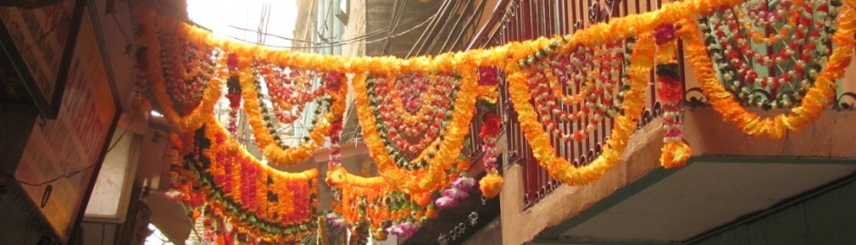 Delhi Walk